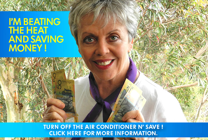 Save $ on Electricity